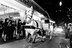 horse drawn carriage with bride and groom